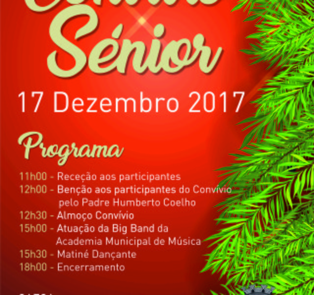 Cartaz convio senior 1 640 600