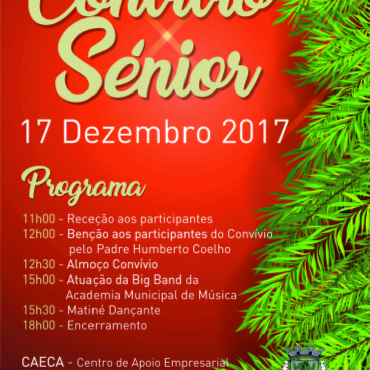 Cartaz convio senior 1 736 736